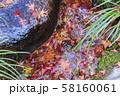 つくばい・秋・もみじの葉 58160061