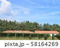安曇野 秋のワイン用ブドウ畑 58164269