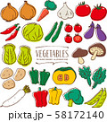 野菜 手描き イラスト 色 58172140