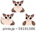 フクロモモンガのバストアップポーズイラストセット(ブラウン) 58191386