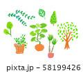 グリーン いろいろ1 58199426