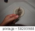 排水溝に溜まった髪の毛を指でつまみ絶望する女性の手 58203988