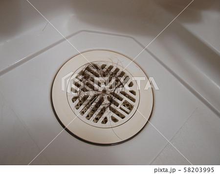 お風呂場の排水溝に溜まった女性の髪の毛 58203995