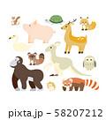 動物 イラスト セット 2 58207212
