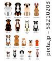 いろいろな犬種 58210203