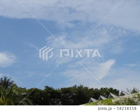 秋の青空と白い雲 58238358