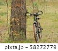 bicycle travel autumn 58272779