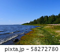 scenic view of the shore of the blue lake 58272780