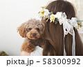 モデルと犬 58300992