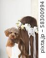 モデルと犬 58300994