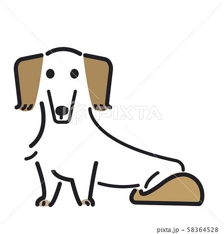 犬 ポーズ 表情 1匹 ミニチュアダックスフンド 58364528