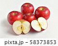 りんご(あかね) 58373853