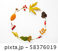 Circular frame made of fallen leaves and berries on white background. Autumn plants with copy space. 58376019