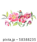 Pink peony bouquet floral botanical flowers. Watercolor background set. Isolated bouquets 58388235
