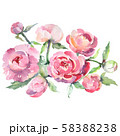 Pink peony bouquet floral botanical flowers. Watercolor background set. Isolated bouquets 58388238