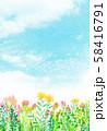 自然風景 花畑 空 水彩 58416791