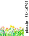 自然風景 花畑 空 水彩 58416795