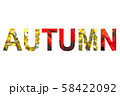 Word AUTUMN with a bright leaves of maple tree 58422092