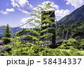 (長野県)国指定重要文化財 桃介橋 58434337