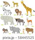 アフリカ サバンナの動物達 58445525