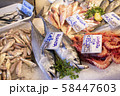 Italian fish market with many different fresh fishes 58447603