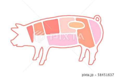 豚肉 部位 58451637