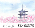 五重塔 桜 水彩画 58468375