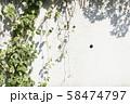 白い壁と緑 58474797
