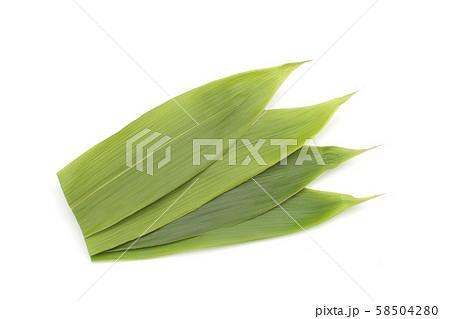 笹の葉、葉、料理、食材の下敷き 58504280