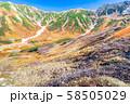 秋の室堂 絶景 紅葉 【富山県】 58505029