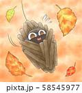 落ち葉とミノムシ・背景あり 58545977