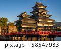 《長野県》黄金色の松本城・夕景 58547933