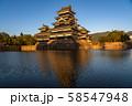 《長野県》黄金色の松本城・夕景 58547948