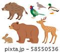 狩猟鳥獣の全身イラストセット 58550536