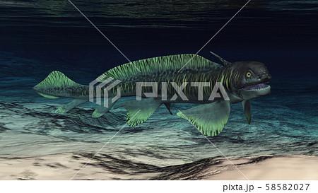 Prehistoric shark Orthacanthus 58582027