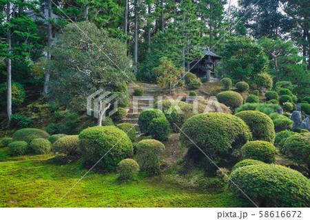 東福寺の日本庭園 58616672