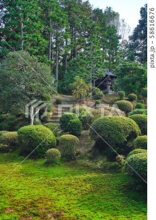 東福寺の日本庭園 58616676