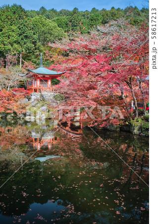 醍醐寺の紅葉 58617213