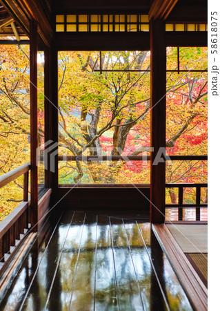 秋の瑠璃光院 58618075