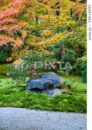 秋の瑠璃光院 58618095
