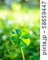 キラキラ輝く幸運の四つ葉のクローバー ハイコントラスト 縦トリミング 58659447