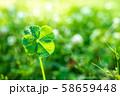 キラキラ輝く幸運の四つ葉のクローバー ハイコントラスト アップ 58659448