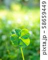 キラキラ輝く幸運の四つ葉のクローバー 縦トリミング 58659449