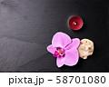 Flower arrangement of orchids. 58701080
