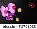 Flower arrangement of orchids. 58701083