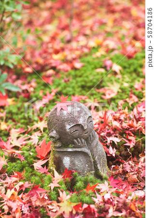 秋の圓光寺 58704186