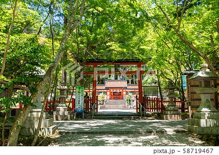 三の鳥居 大原野神社 参道 58719467