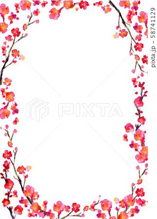 梅 水彩 梅の花 和 正月 イラスト 58741129