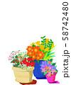 花 寄せ植え ガーデニング 庭 草花 植木鉢 58742480