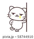 白猫【ドヤ顔】 58744910